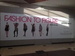 Fashion to Figure 2