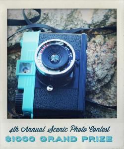 Photo Contest-$1000 Grand Prize