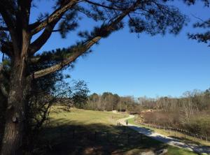 Greenbelt Trail - Jonathan Dockery