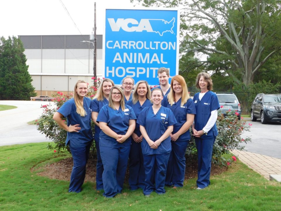 VCA Animal Hospital Recognizes Staff for National Veterinary
